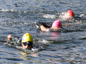 triathlon-training-swimming